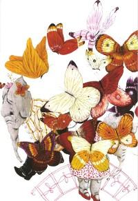 Jeugdblog vlinders